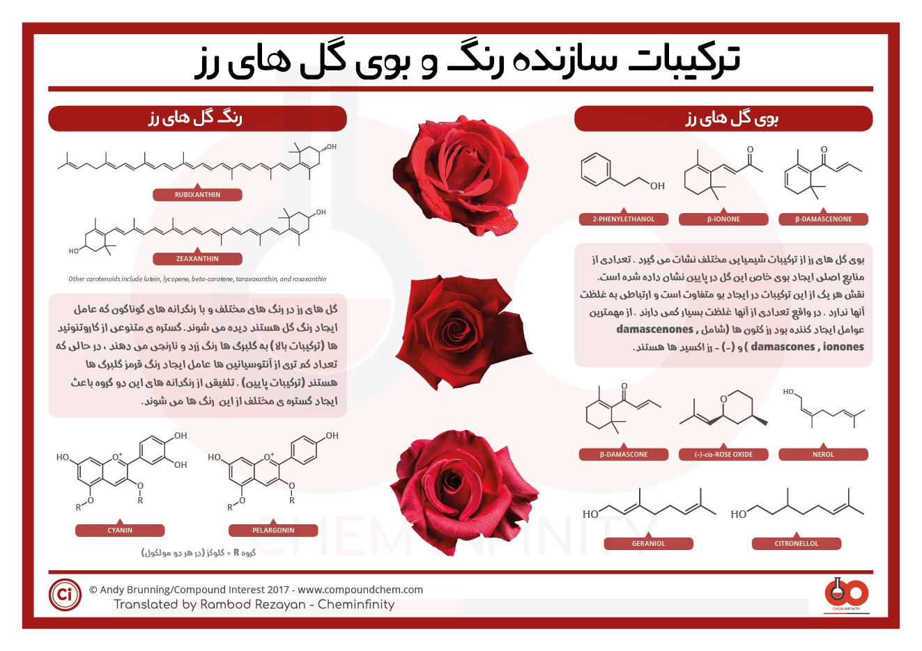 ترکیبات سازنده بو و رنگ گل رز