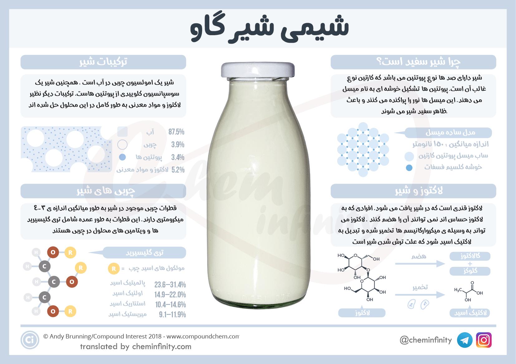 چرا شیر سفید است؟