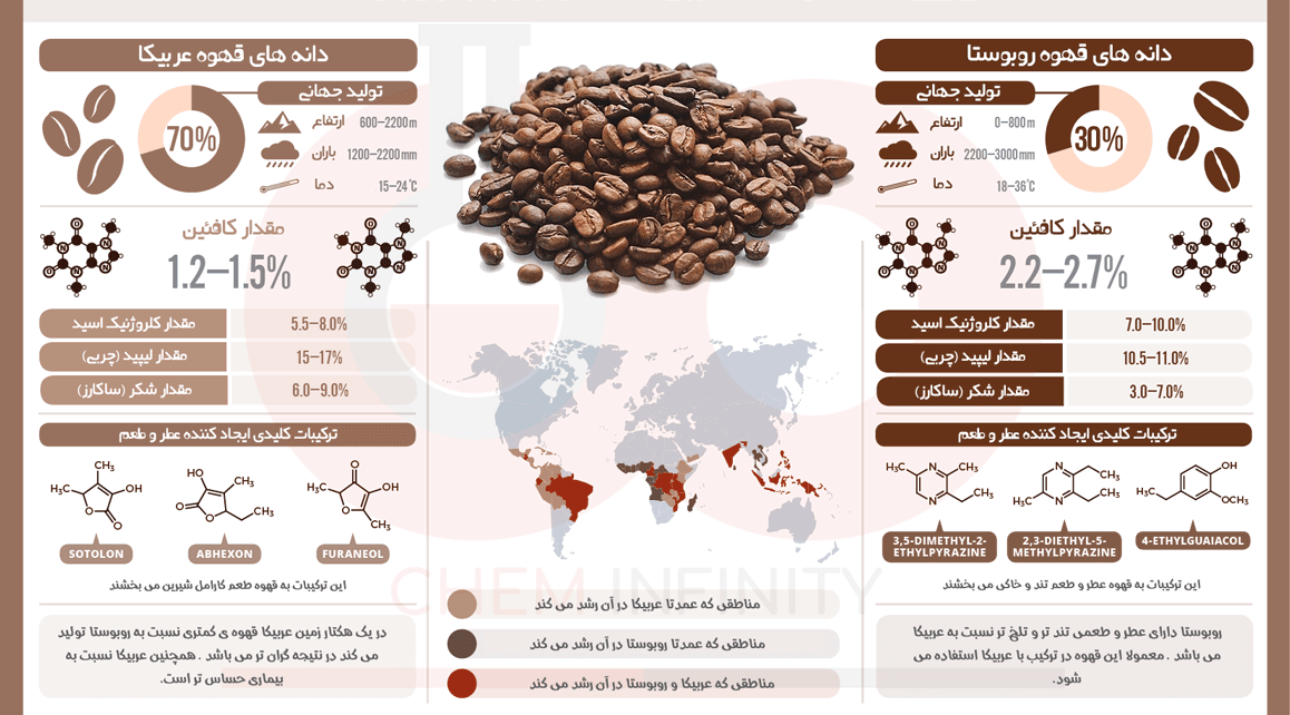 تفاوت قهوه روبوستا و عربیکا